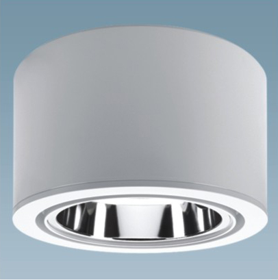 CFL Downlights